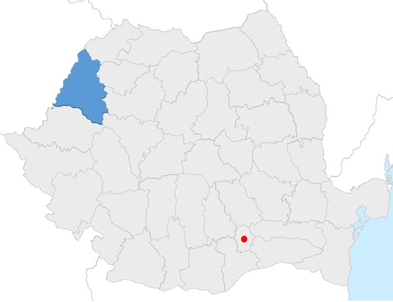 filiala bihor